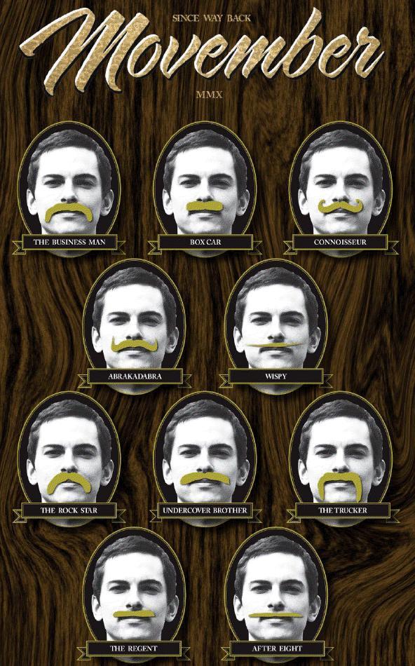 Movember Styles